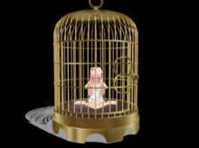 gilded_cage_by_kirschsalvator-d45ti8m