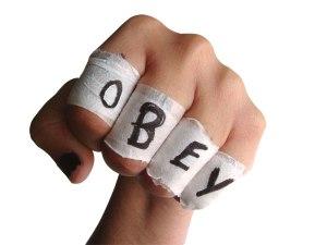 obey fist