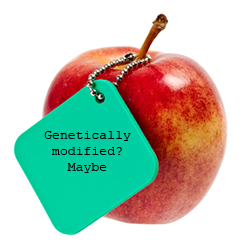gmo_apple