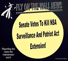 senate votes to kill NSA