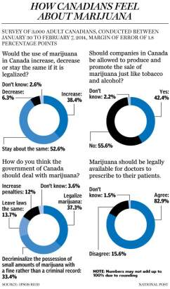 marijuana_poll_c_mf
