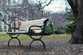 winter bench no snow
