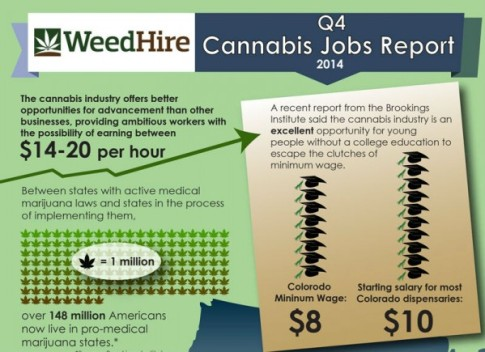 cannabis-industry-jobs-599x435