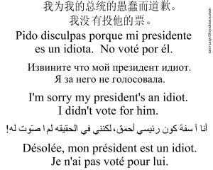 trump i didn't vote for him