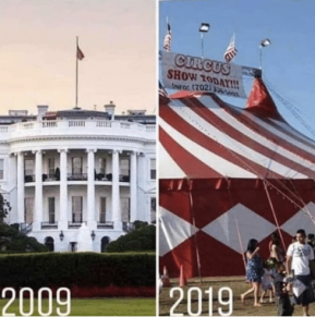 white house 10 year challenge