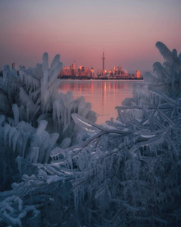 toronto winter view from Island