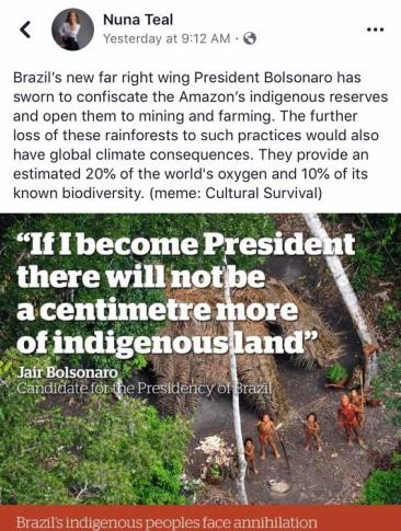 brazil president rain forest