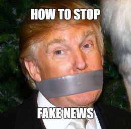 fake news how to stop