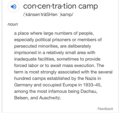 concentration camp definition